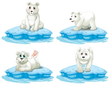 oso blanco: Ilustración de los osos polares establece