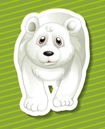 northpole: Illustration of a close up polar bear