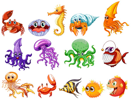 illustration of many sea creatures Vector