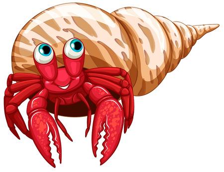 hermit: Illustration of a single hermit crab Illustration