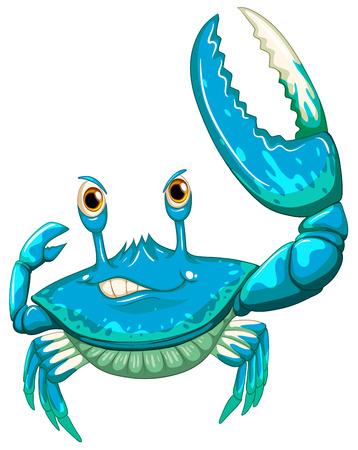 crab legs: Illustration of a close up crab