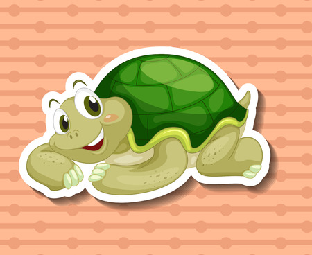 freshwater turtle: Illustration of a close up turtle