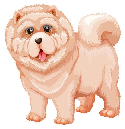white fur: Illustration of a close up dog