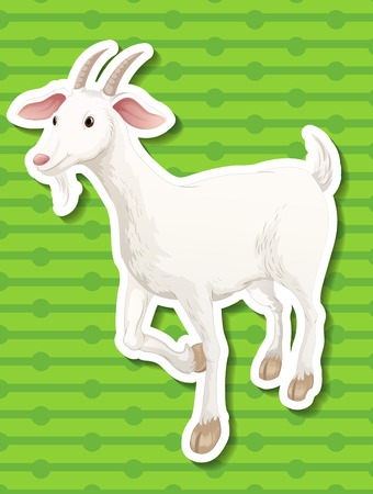 agriculture wallpaper: Illustration of a single goat with green background