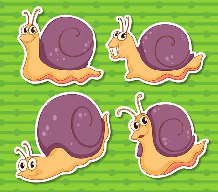 snail: Illustration of a set of snails