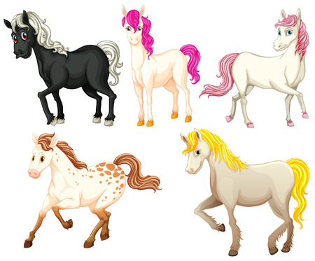pony: Illustration of beautiful horses