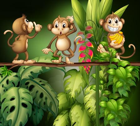 Illustration of monkeys in the jungle 矢量图像