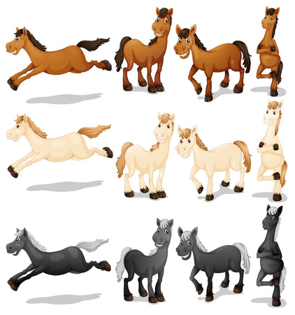 Illustration of a set of horses Vectores