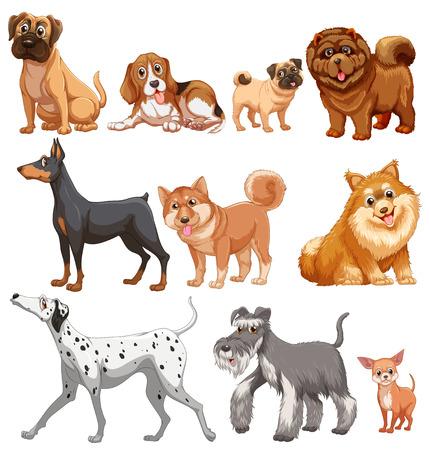Ilustración de diferentes tipos de perros