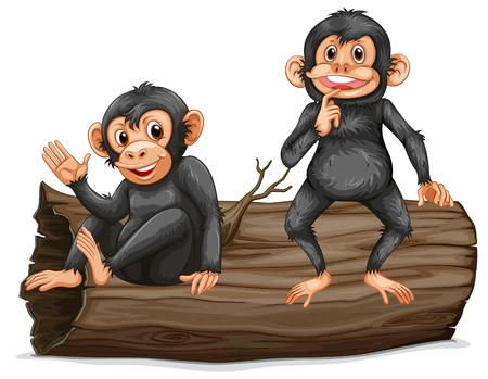 mono caricatura: Ilustración de dos chimpancés en un tronco Vectores