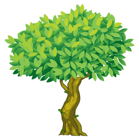 Illustratie van een close-up boom