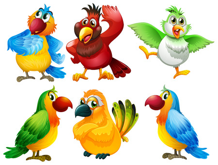 talkative: Illustration of different color of parrots