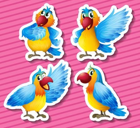 macaw: Illustration of a set of parrots Illustration