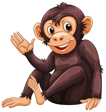 Illustration of a close up monkey Vector