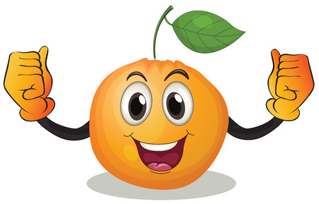 cartoon fruit: Illustration of an orange with a face