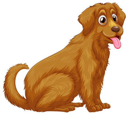 golden retriever puppy: Illustration of a close up dog