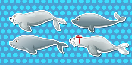 sea otter: Illustration of dolphin and otter