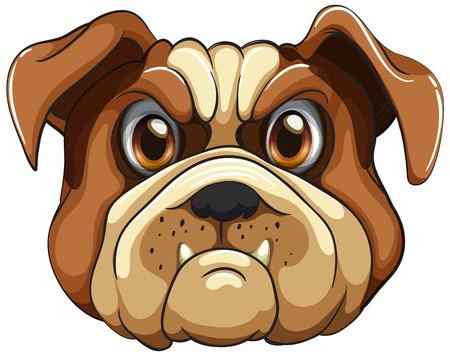 Illustration of a close up bulldog Vector
