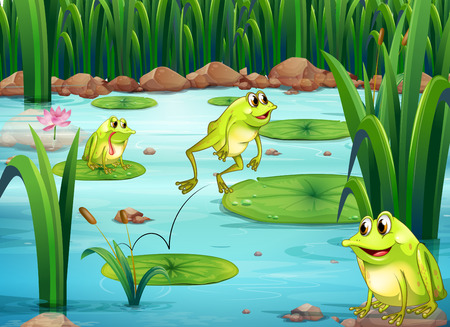 Illustration of many frogs in the pond Ilustração