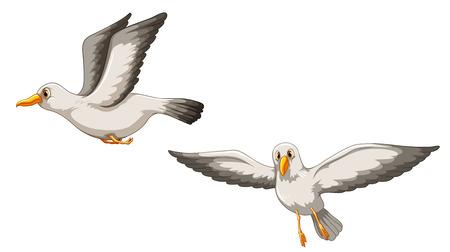 paloma caricatura: Ilustración de dos pájaros que vuelan
