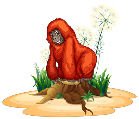 Illustration of a close up orangutan Vector