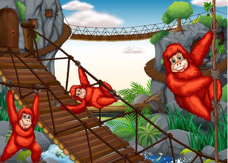 illustration of chimpanzees hanging on the bridge Vector