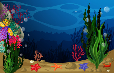 sea weeds: illustration of a view underwater