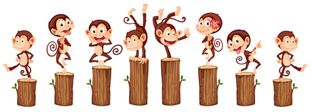 funny creature: illustration of many monkeys on the log Illustration