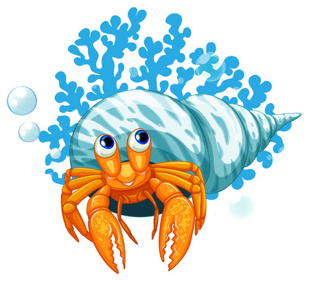 hermit: illustration of a close up hermit crab