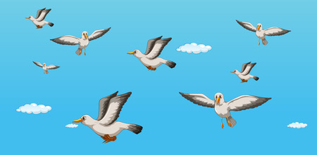 sea gull: illustration of seagulls flying in the sky