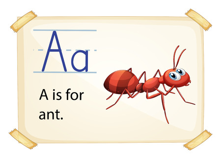 phonetic: illustration of a flashcard letter A for ant