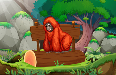 illustration of an orangutan in a jungle Vector