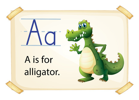 flash card: Alligator flashcard poster with letters Illustration