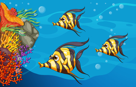 Three fish on a tropical reef Vector