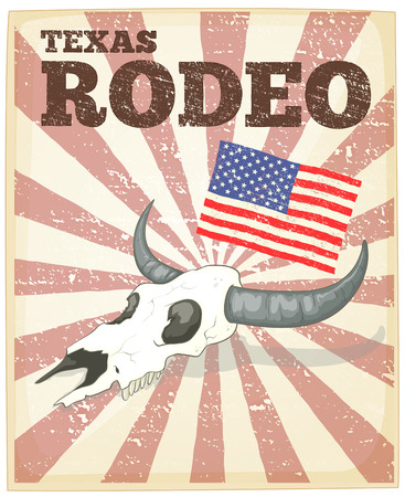 western theme: Texas rodeo theme poster with usa flag