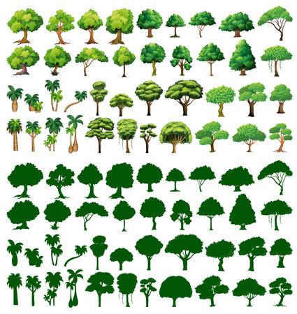 boom: Silhouet van bomen op een witte achtergrond