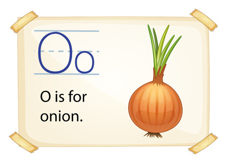 vowel: A letter O for onion on a white background Illustration