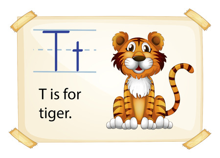 stipes: A letter T for tiger on a white background