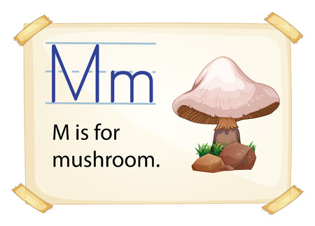 big and small: A letter M for mushroom on a white background