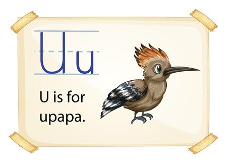 Poster of an alphabet U Vector