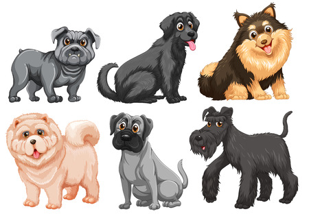 Set of different breed of dogs Illustration