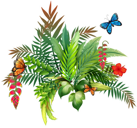 dessin fleur: Illustration d'un beau fleurs avec des papillons