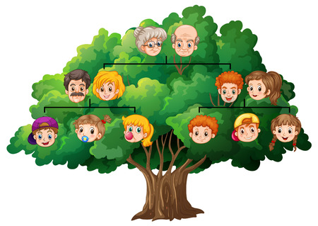 Illustration of a completed family tree Illustration