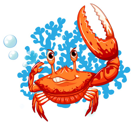 A crab on a white background Vector