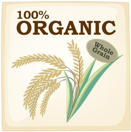 rice harvest: Illustration of an organic sign Illustration