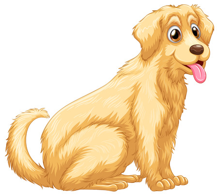 A cute dog panting on a white background