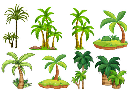 island clipart: Illustration of different kind of palm trees