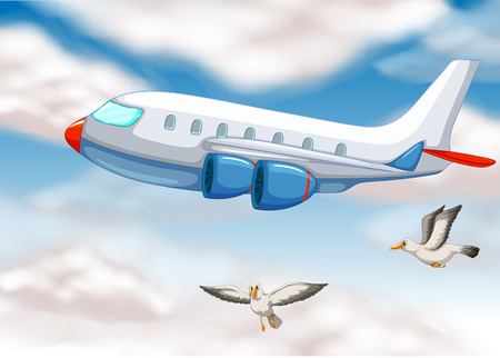 cockpit: An airplane in the sky with two birds