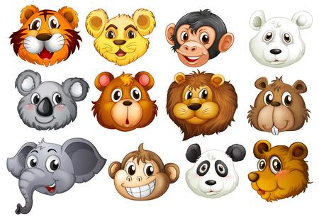 elephant head: Illustration of many animal heads Illustration