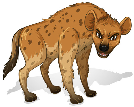 Illustration of a close up hyenas Vector